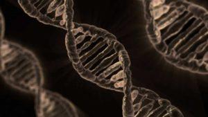 Можем ли мы изменить свой генетический код или судьбу?
